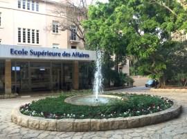 Mission d'enseignement à l'École supérieure des affaires de Beyrouth