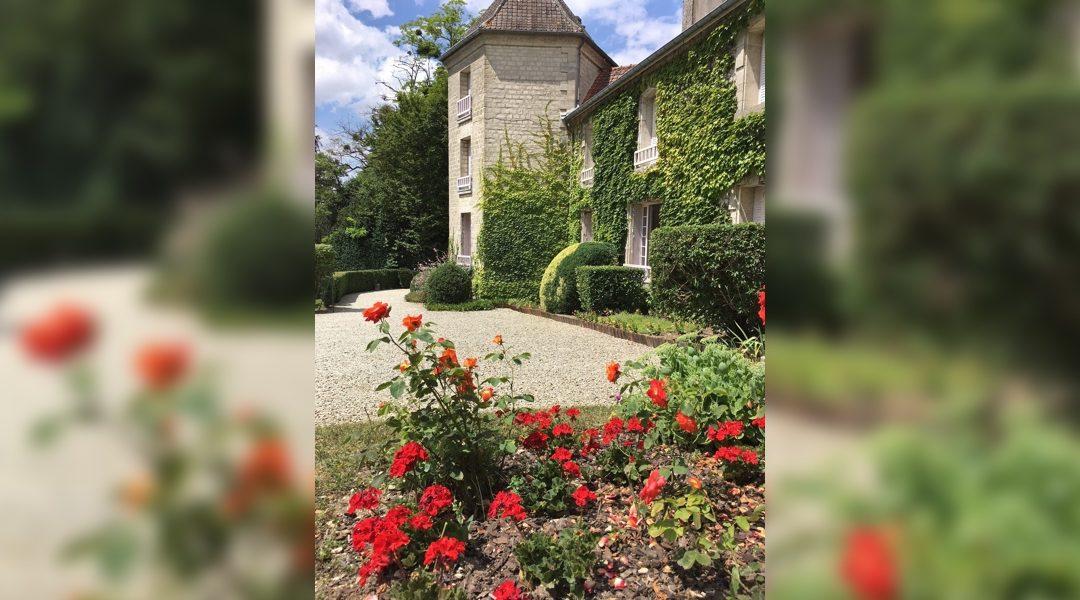 Achetez vos rosiers Charles de Gaulle et France Libre à La Boisserie !